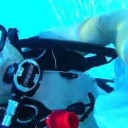 Recherche de fuite sur piscine en plongée
