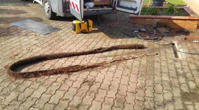 Extraction de racines d un tuyau en pvc